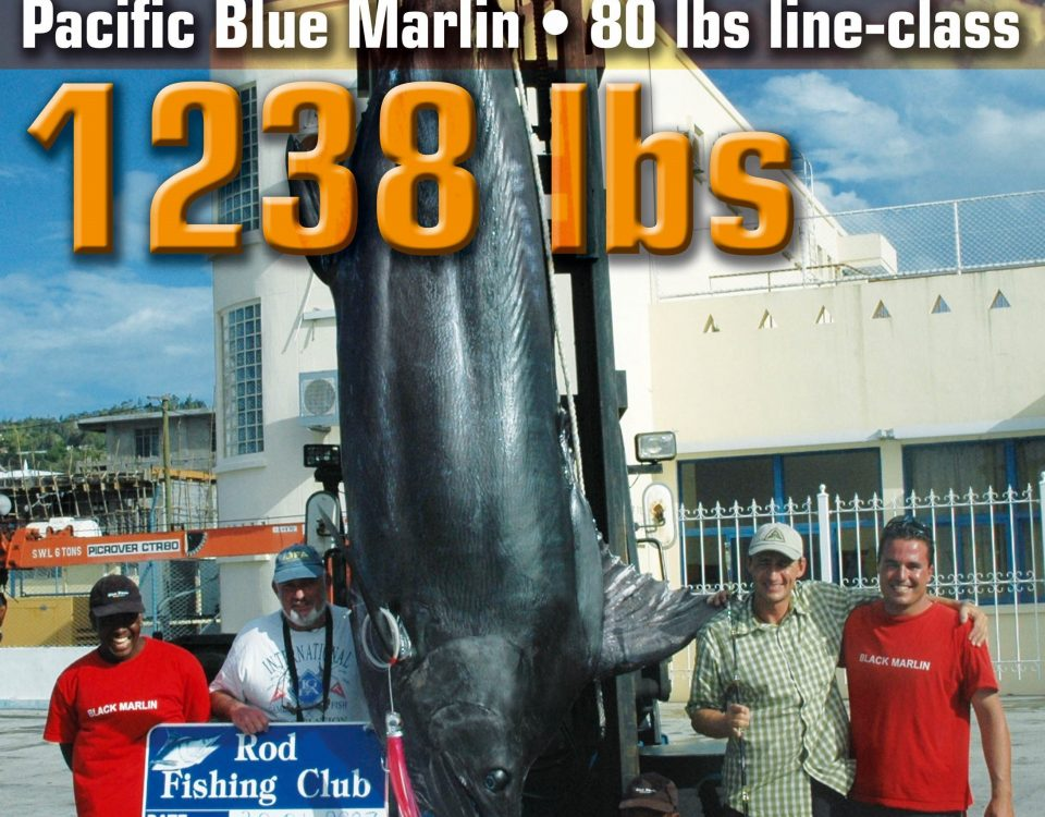 561.5kg Pacific blue marlin world record 80lb on trolling - 30 01 2007