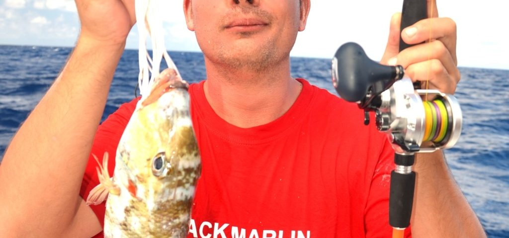 Appât coupé pour Pierre - Rod Fishing Club - Ile Rodrigues - Maurice - Océan Indien