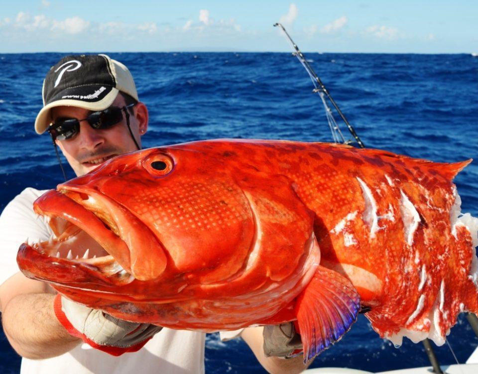 Babonne coupée pour Loic - Rod Fishing Club - Ile Rodrigues - Maurice - Océan Indien