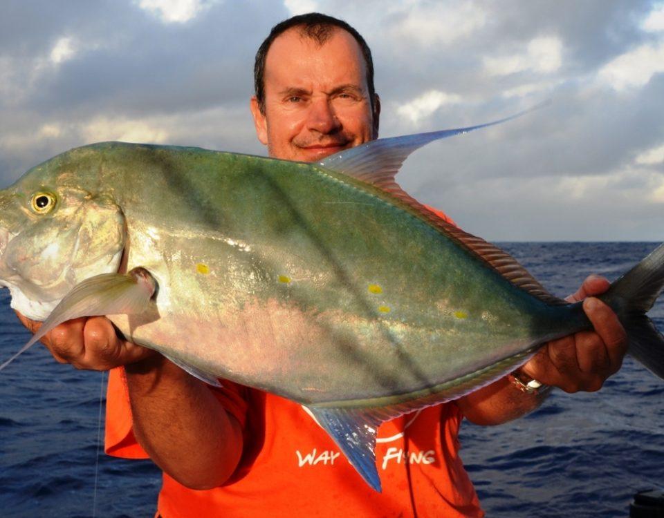 Carangue des îles ou à points jaunes - Rod Fishing Club - Ile Rodrigues - Maurice - Océan Indien