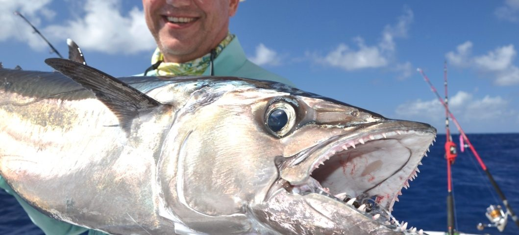 Dogtooth Tuna on Jigging for Igor - Rod Fishing Club - Rodrigues Island - Mauritius - Indian Ocean