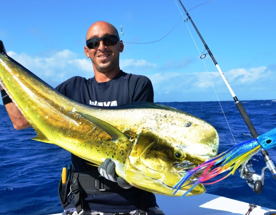 Dorade mâle par Eran - Rod Fishing Club - Ile Rodrigues - Maurice - Océan Indien