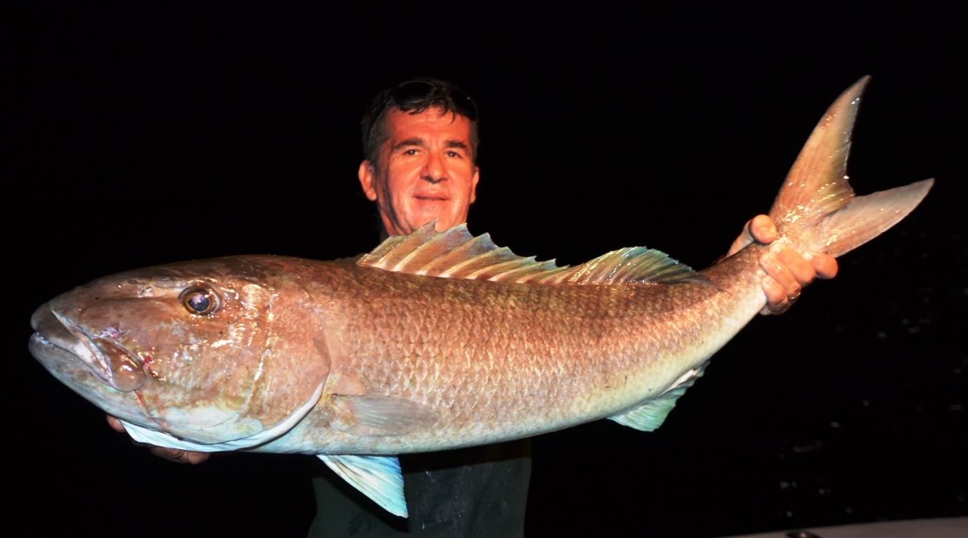 Gros poisson poulet par louis rod fishing club ile for Acheter poisson rouge en gros