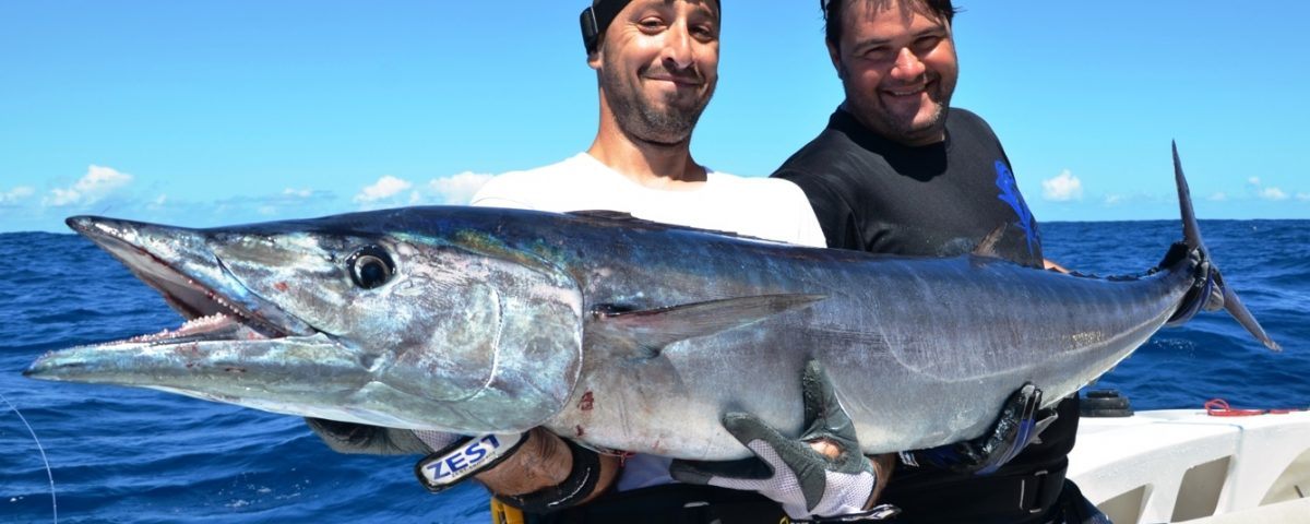 Gros wahoo du banc Hawkins - Rod Fishing Club - Ile Rodrigues - Maurice - Océan Indien