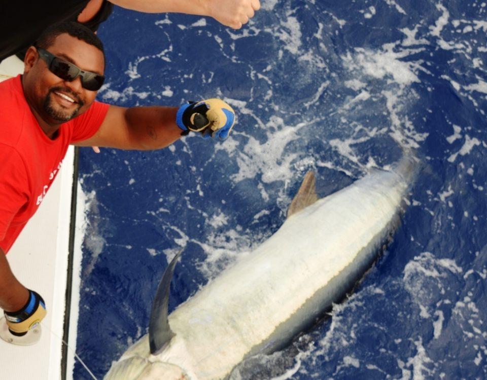 Marlin noir 150kg relâché Novembre 2015 - Rod Fishing Club - Ile Rodrigues - Maurice - Océan Indien