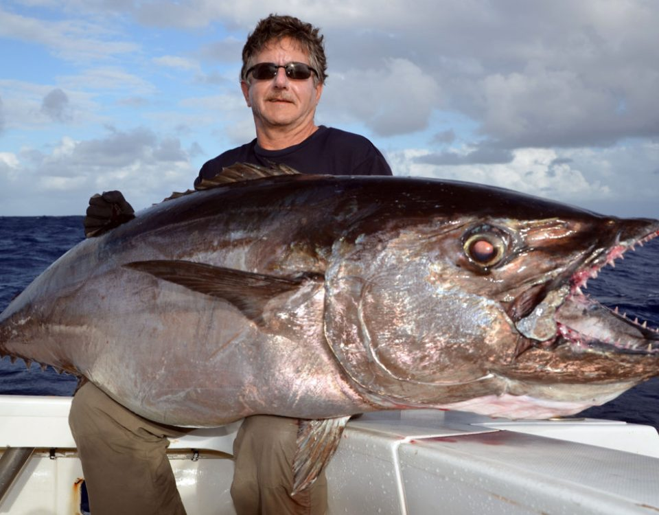Thon à dents de chien 70kg par Claudius - Rod Fishing Club - Ile Rodrigues - Maurice - Océan Indien