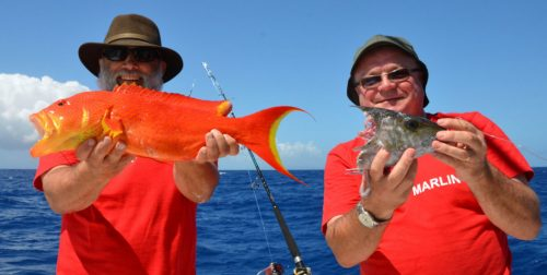 variety-on-bottom-fishing-rod-fishing-club-rodrigues-island-mauritius-indian-ocean