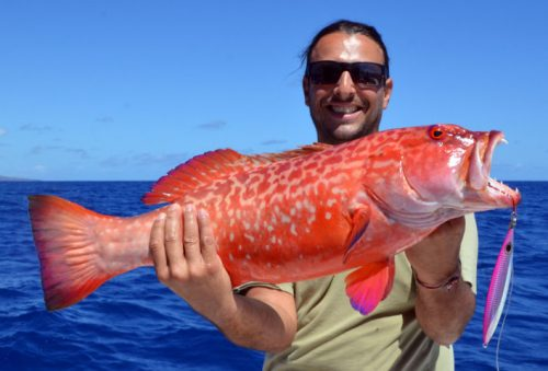 red-corail-trout-on-jigging-with-jiglee-jig-rod-fishing-club-rodrigues-island-mauritius-indian-ocean