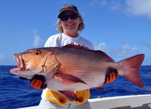 carpe-rouge-prise-en-peche-a-l-appat-par-christine-avant-relache-rod-fishing-club-ile-rodrigues-maurice-ocean-indien