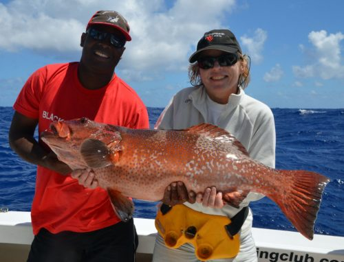 nice-red-corail-trout-on-baiting-by-christine-before-releasing-rod-fishing-club-rodrigues-island-mauritius-indian-ocean