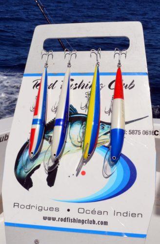 poissons-nageurs-karikko-internationaux-rod-fishing-club-rodrigues-island-mauritius-indian-ocean