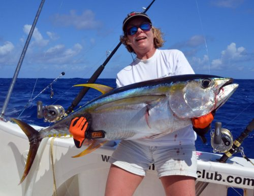 thon-jaune-de-30kg-en-peche-a-la-traine-par-christine-rod-fishing-club-ile-rodrigues-maurice-ocean-indien