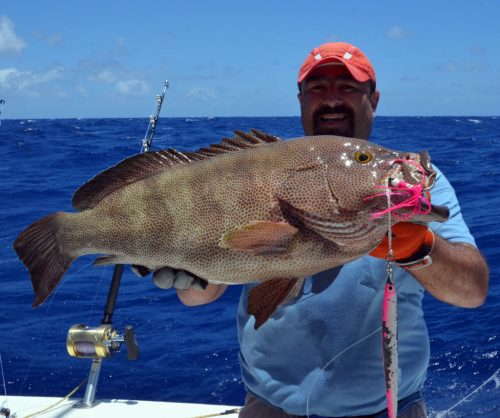 Brownspotted grouper caught on jigging by Malik at 120m deep - www.rodfishingclub.com - Rodrigues Island - Mauritius - Indian Ocean