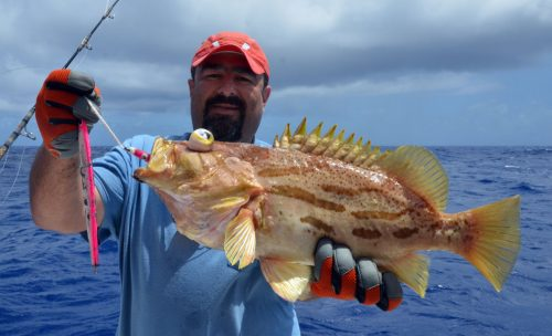 Comet grouper caught on jigging by Malik by 200m deep - www.rodfishingclub.com - Rodrigues Island - Mauritius - Indian Ocean
