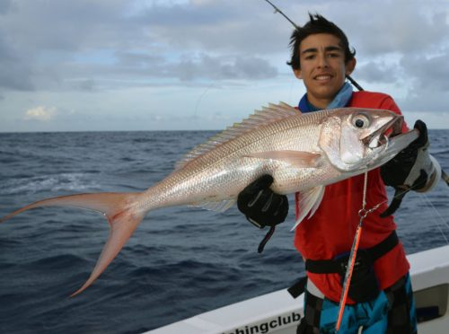 Crimson jobfish caught on jigging by Marius - www.rodfishingclub.com - Rodrigues Island - Mauritius - Indian Ocean