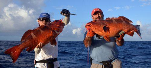 Doublé de mérous babone pris en jigging avant relâche - www.rodfishingclub.com - Ile Rodrigues - Maurice - Océan Indien