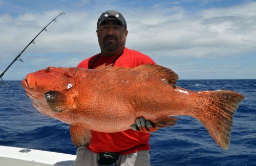 Mérou babone pris en jigging par Malik avant relâche - www.rodfishingclub.com - Ile Rodrigues - Maurice - Océan Indien