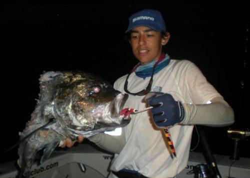 Tête de carangue ignobilis (GT) prise en jigging par Marius - www.rodfishingclub.com - Ile Rodrigues - Maurice - Océan Indien