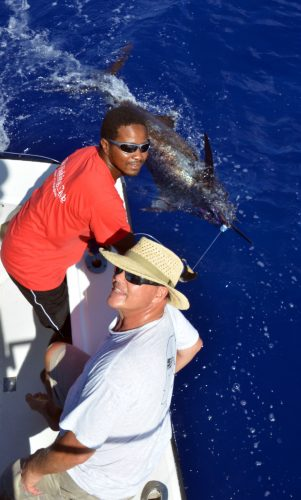 200lbs blue marlin on leader before releasing - www.rodfishingclub.com - Mauritius - Indian Ocean