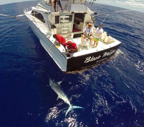 Marlin bleu de plus de 200kg vu d'un drône - www.rodfishingclub.com - Maurice - Océan Indien