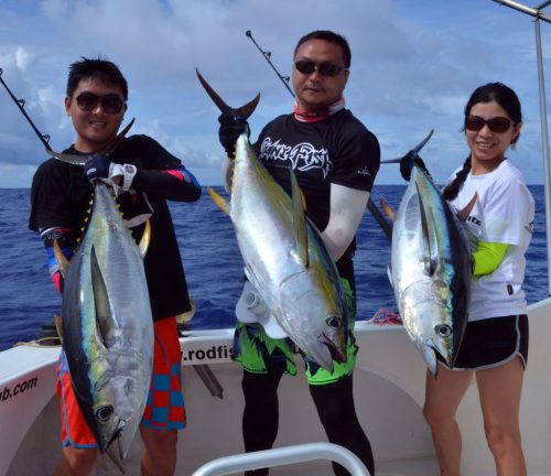 Nice yellowfin tunas on trolling - www.rodfishingclub.com - Rodrigues Island - Mauritius - Indian Ocean