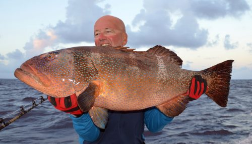 Red corail trout caught on jigging by Marc before releasing - Rod Fishing Club - Rodrigues Island - Mauritius - Indian Ocean