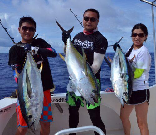 Thons jaunes en pêche a la traine - www.rodfishingclub.com - Ile Rodrigues - Maurice - Océan Indien