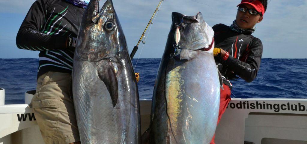 Magnifiques thon a dents de chien de 44kg et 38kg - www.rodfishingclub.com - Ile Rodrigues - Maurice - Océan Indien