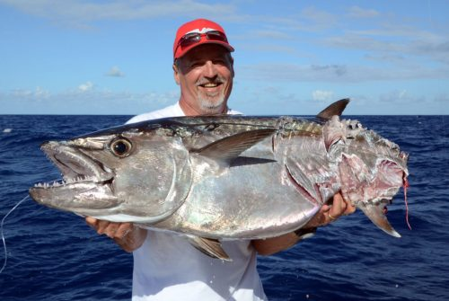 Nice cutting doggy on baiting by Silvano - www.rodfishingclub.com - Rodrigues Island - Mauritius - Indian Ocean