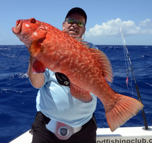 Nice red corail trout for Bruno on jigging - www.rodfishingclub.com - Rodrigues Island - Mauritius - Indian Ocean