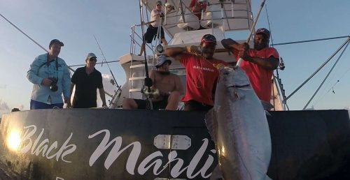 Pull 57.5kg doggy up on the boat by Fred on baiting - www.rodfishingclub.com - Rodrigues Island - Mauritius - Indian Ocean