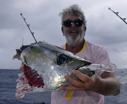 Head of yellowfin tuna caught after the shark - www.rodfishingclub.com - Rodrigues Island - Mauritius - Indian Ocean