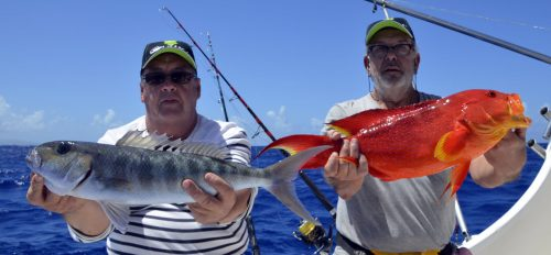 Multifishing on Black Marlin - www.rodfishingclub.com - Rodrigues Island - Mauritius - Indian Ocean
