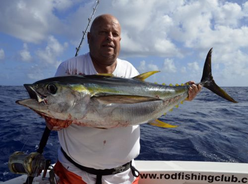 Yellowfin tuna caught on trolling by Jean Michel - www.rodfishingclub.com - Rodrigues Island - Mauritius - Indian Ocean