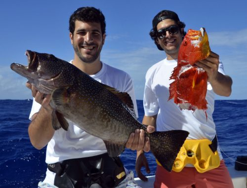 Diversity on bottomfishing - www.rodfishingclub.com - Rodrigues Island - Mauritius - Indian Ocean