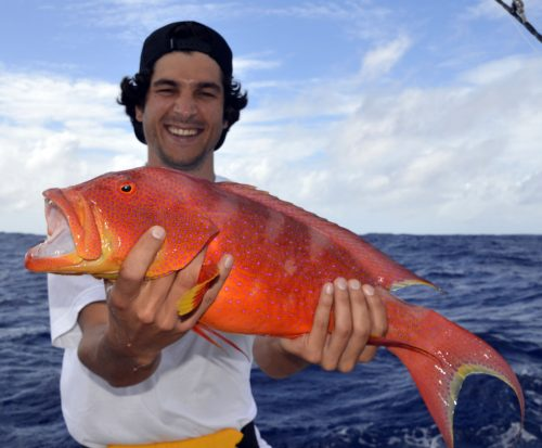 Moontail Sea Bass for Yohan on baiting - www.rodfishingclub.com - Rodrigues Island - Mauritius - Indian Ocean