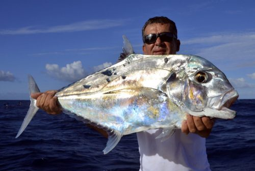 African pompano (alectis ciliaris) by Louis on jigging - www.rodfishingclub.com - Rodrigues - Mauritius - Indian Ocean