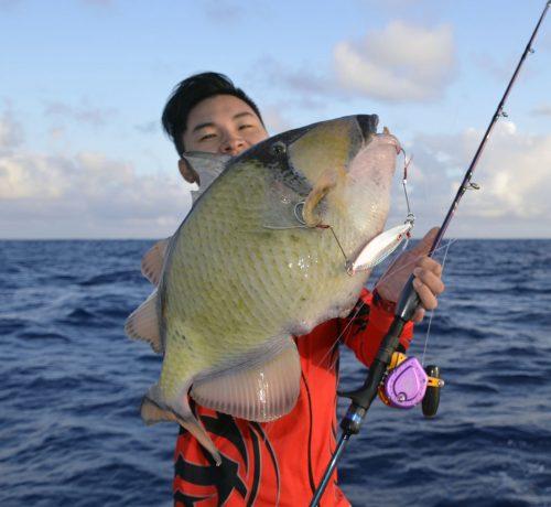 Baliste vert pris en slow jigging - www.rodfishingclub.com - Rodrigues - Maurice - Océan Indien