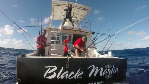 Fighting on the Black Marlin - www.rodfishingclub.com - Rodrigues Island - Mauritius - Indian Ocean