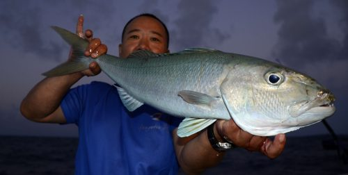 Nice jobfish on slow jigging - www.rodfishingclub.com - Rodrigues - Mauritius - Indian Ocean