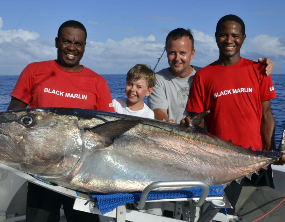 89.5kg Potential WORLD RECORD Dogtooth tuna small fry on baiting - www.rodfishingclub.com - Rodrigues Island - Mauritius - Indian Ocean -