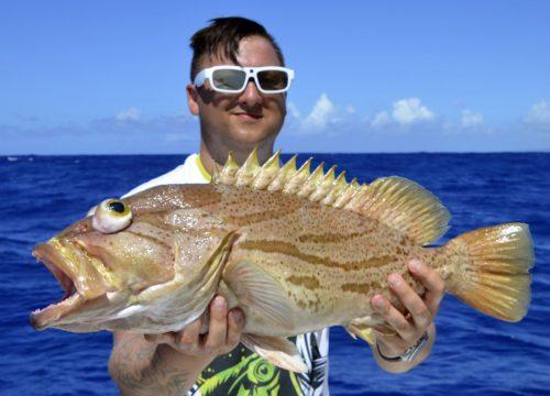 Comet grouper caught on baiting - www.rodfishingclub.com - Rodrigues - Mauritius - Indian Ocean