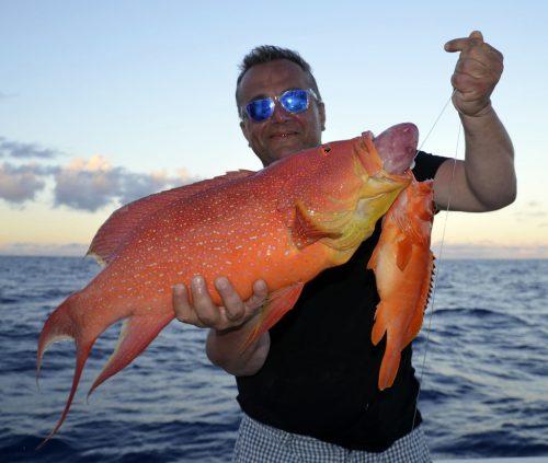 Croissant queue jaune et mérou pris en pêche a l'appât - www.rodfishingclub.com - Rodrigues - Maurice - Océan Indien