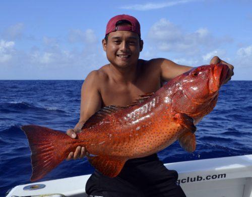 Mérou babone en pêche au jig par Alex - www.rodfishingclub.com - Rodrigues - Maurice - Océan Indien