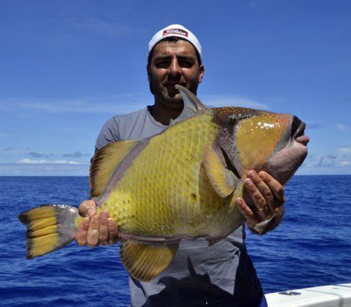 Baliste vert en pêche a l'appât - www.rodfishingclub.com - Rodrigues - Maurice - Océan Indien
