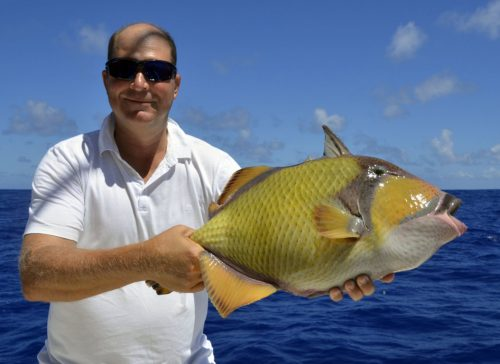 Balistoide on baiting - www.rodfishingclub.com - Rodrigues - Mauritius - Indian Ocean