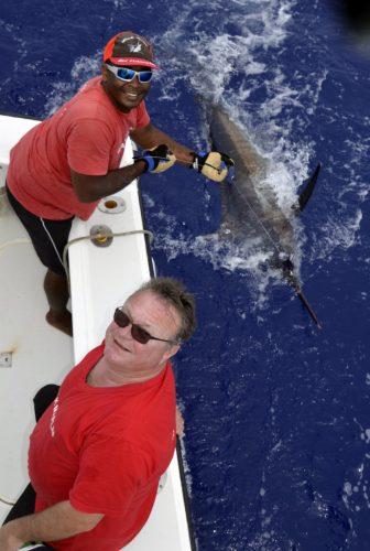 Blue marlin on trolling by Pierre - www.rodfishingclub.com - Rodrigues - Mauritius - Indian Ocean