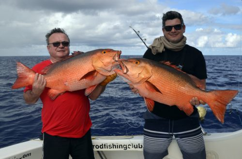 Double strike of red snapper on baiting - www.rodfishingclub.com - Rodrigues - Mauritius - Indian Ocean
