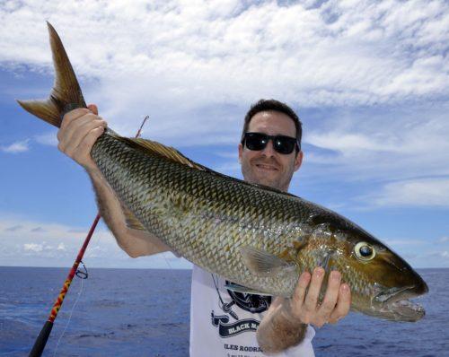Jobfish on baiting by Ju - www.rodfishingclub.com - Rodrigues - Mauritius - Indian Ocean