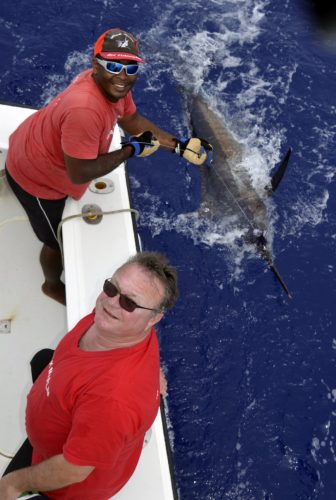 Marlin bleu en pêche a la traîne par Pierre - www.rodfishingclub.com - Rodrigues - Maurice - Océan Indien